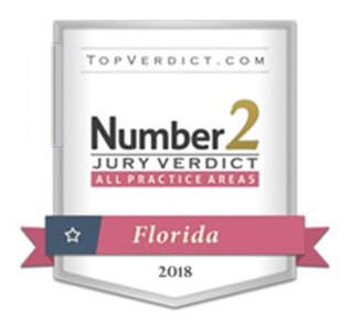 The jury verdict that Mr. Steinfeld obtained for his clients in the Palm Beach County Circuit Court case of Michael and Beth Miskiewicz vs. Kurt and Sheri Predmore where the Predmores failed to disclose known material defects in the sale of their home to Mr. and Mrs. Miskiewicz was evaluated and determined by TopVerdict.com to be the second highest verdict issued in such a case in the entire State of Florida in 2018